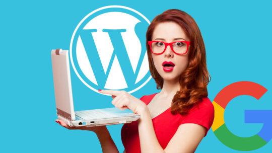 Complemento de WordPress de Google Web Stories lanzado oficialmente