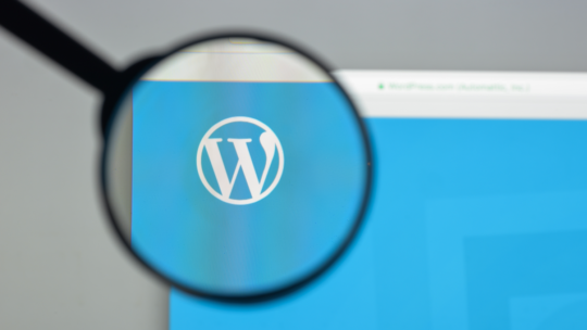 25 errores de SEO de WordPress para corregir para una mejor clasificación