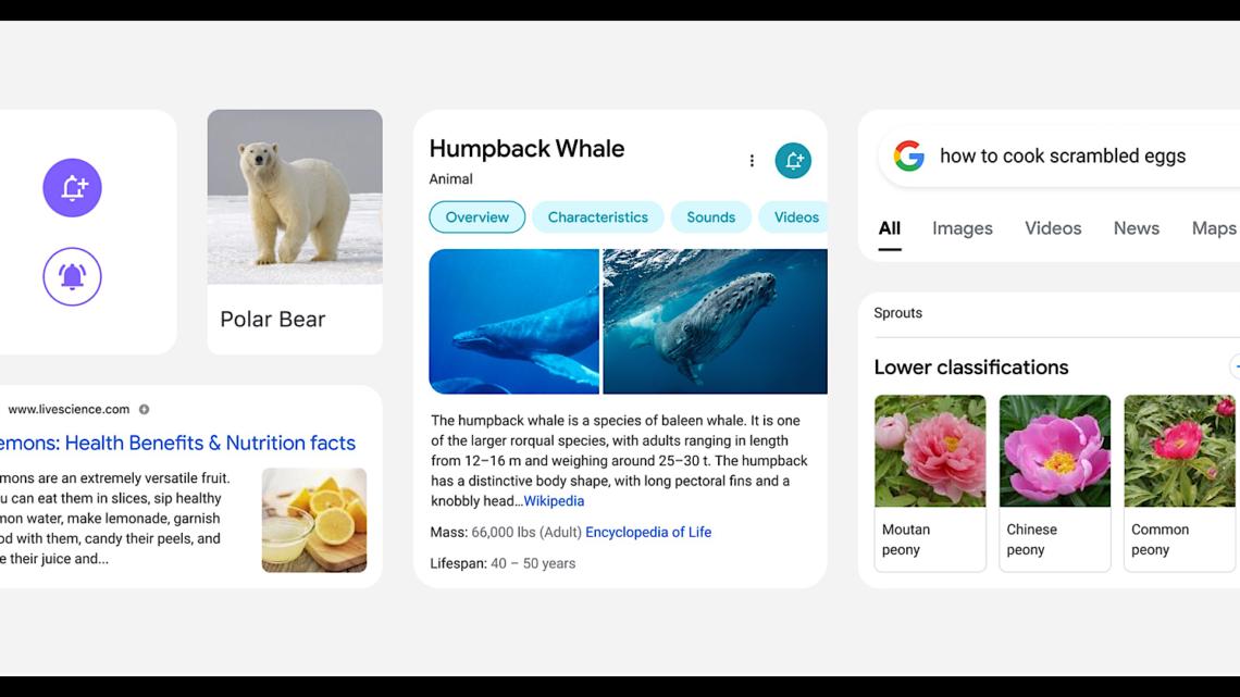 Google está reconsiderando los resultados de la búsqueda móvil